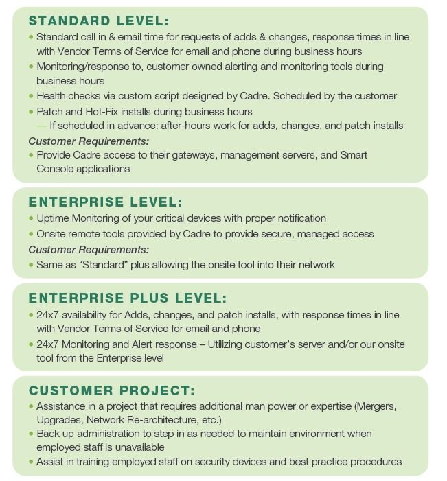 Managed Services Levels-1.jpg